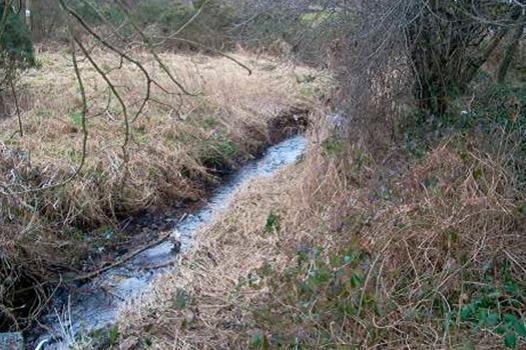 Ballyvolane Flood Risk Assessment & Management Plan 1