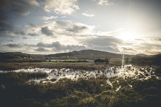 Ballyvolane Flood Risk Assessment & Management Plan