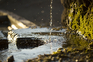 Flood Risk Assessment (FRA) and Management Plans