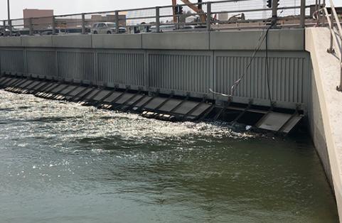 Ma'ameer Bridge Flushing Assessment