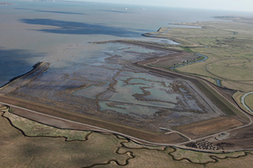 London Gateway - Cooling Marshes